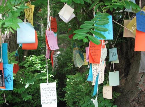 textes originaux,écriture,arbre à souhaits,inde,vacances,actu,actualité