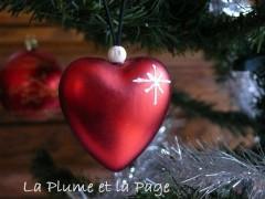 P1120737 Coeur Merry Christmas 2011.jpg