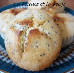 gourmandises,cuisine,cakes,citron,pavot,actu,actualité