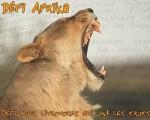 defi_Afrika_Choupynette[2].jpeg