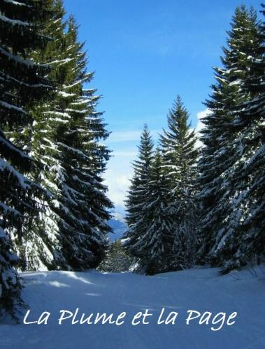 poésie, littérature, romans, sylvain tesson, dans les forêts de sibérie, actu, actualité