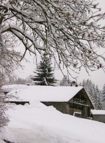 texte original,écriture,littérature,hiver,neige,tempête,insomnie,actu,actualité
