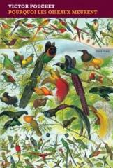 livres,littérature,lecture,pourquoi les oiseaux meurent,victor pouchet,actu,actualité