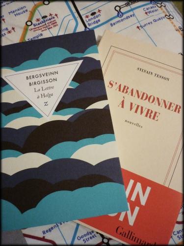blogs,littérature,lecture,livres,sylvain tesson,bergsveinn birgissonactu,actualité