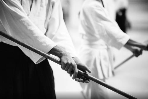 textes originaux,écriture,littérature,iaido,art martial japonais,actu,actualité