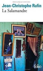 livres,littérature,romans,jean-christophe rufin,la salamandre,brésil,actu,actualité