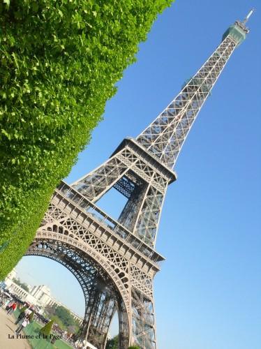 P1080525 La plume Tour Eiffel.jpg
