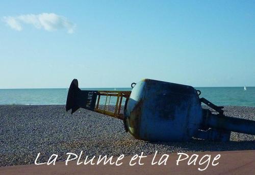 P1120232 Dieppe Plage fev 2012.jpg