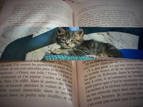 littérature,hypokâgne,un hiver à paris,jean-philippe blondel,roman,actu,actualité